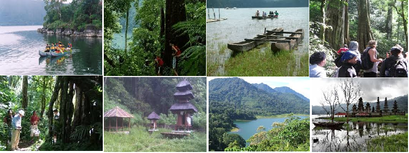 BALI JUNGLE TOURS IN TAMBLINGAN TREKKKING