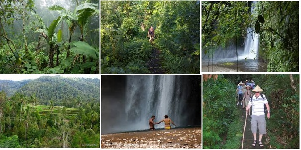 trekking in jungle munduk