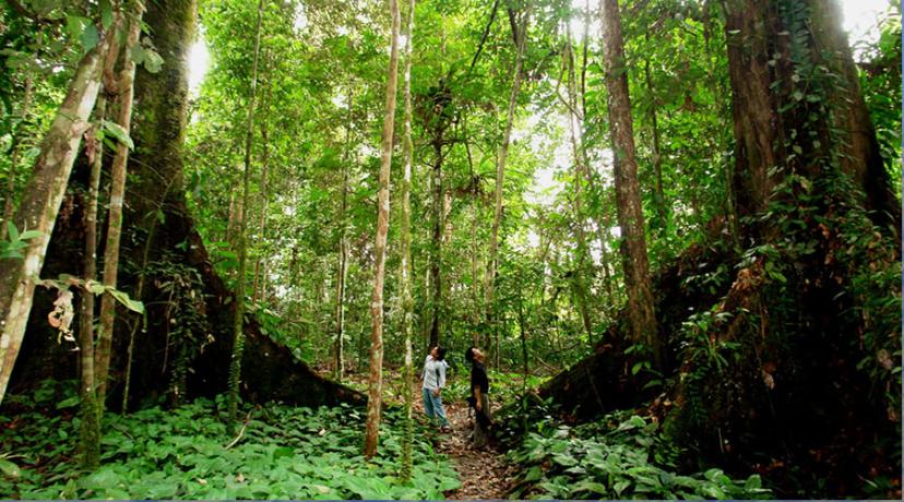 bali-trekking-tour-package