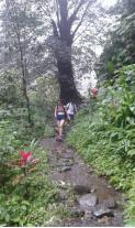 hiking-route-to-sekumpul-waterfalls