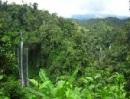 local guide sekumpul waterfall trekking
