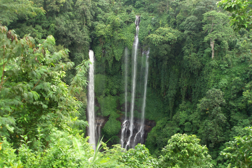sekumpul-waterfall-trekking