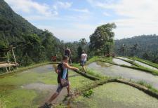 sekumpul-waterfalls-trekking-bali-jungle-trekking