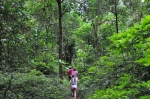 Bali trekking organizer who organize Trekking Tours, jungle adventure, hiking, mountain treks in Bali