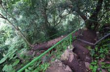walking-trip-to-sekumpul-waterfalls-bali-jungle-trekking