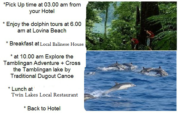 Bali jungle trek and dolphin tour