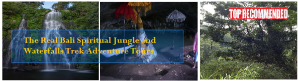 Bali jungle and waterfall trekking adventure tour