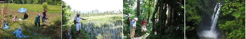 BALI TREKKING LOCAL GUIDE
