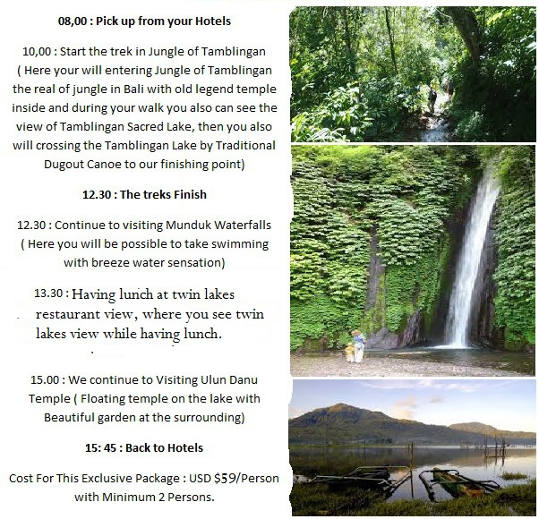Bali tour package, trekking in bali, hiking to the jungle of bali