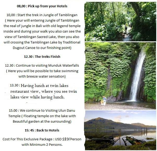 Bali tour package, trekking in bali, hiking to the jungle of bali