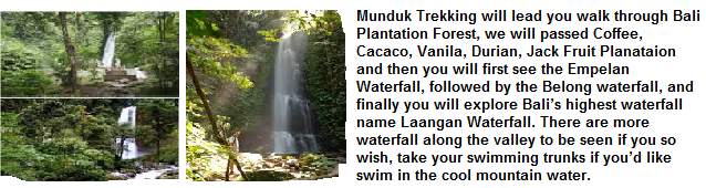Munduk Village Trekking Package