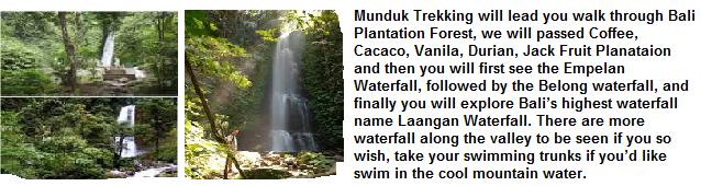 Munduk Village Hikes