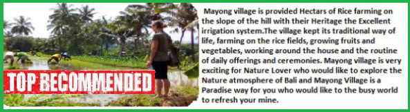 Mayong Village Trekking Tour