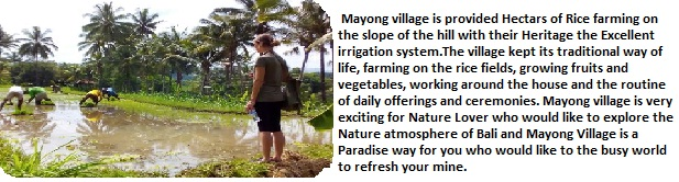 Mayong Village hikes