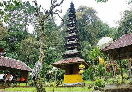 Jungle hiking bali