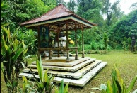 Jungle trek bali