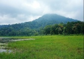 Tamblingan jungle tours