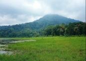 Tamblingan jungle tours