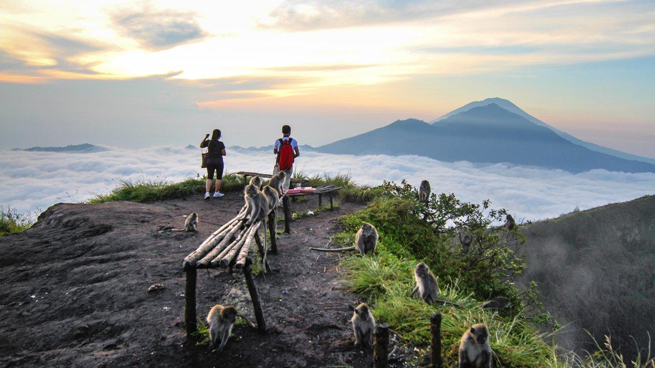 Pildiotsingu Mount Batur Sunrise Hiking and Coffee Plantation Tour tulemus