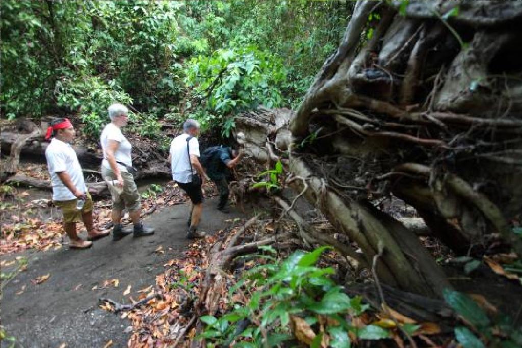 Trek To West Of Bali With Bali Jungle Trekking Team Bali Jungle