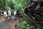 Trek to west of Bali with Bali Jungle Trekking Team