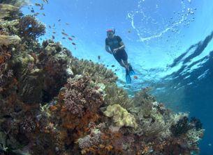 West Bali snorkeling tou