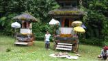 bali-jungle-adventure