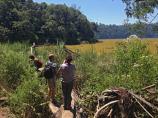 exploring-jungle-of-bali