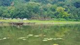 Gubung temple located at finishing point of Tamblingan Trek