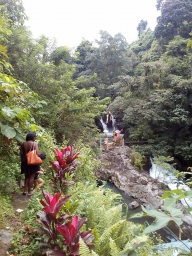Hiking adventure to sambangan Village with Bali Jungle Trekking Team Guide