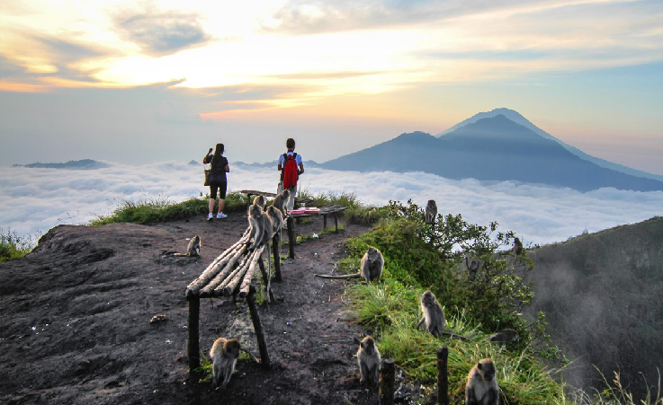 sunrise-trekking-review
