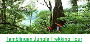 TAMBLINGAN TREKKING PACKAGE