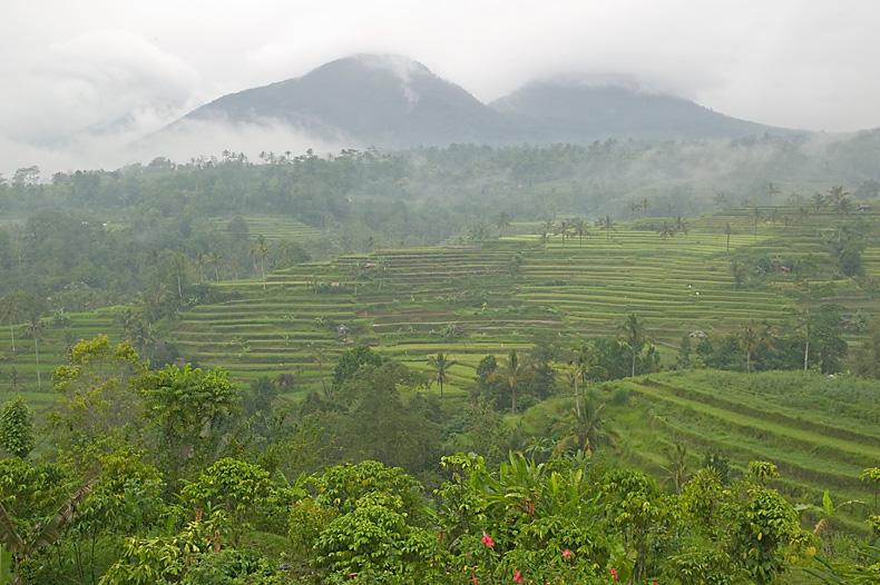 visit-jatiluwih-during-do-hiking-to-mt-batukaru