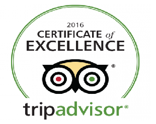 bali-jungle-trekking-review on TripAdvisor