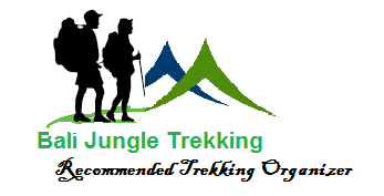 BALI JUNGLE TREKKING | Best Hiking Tour Guide |
