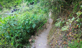 Hiking route to sekumpul waterfalls