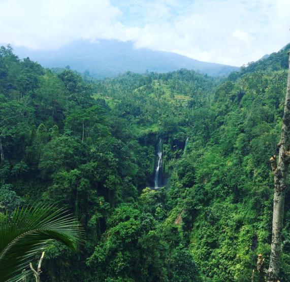 Lemukih Waterfalls Bali