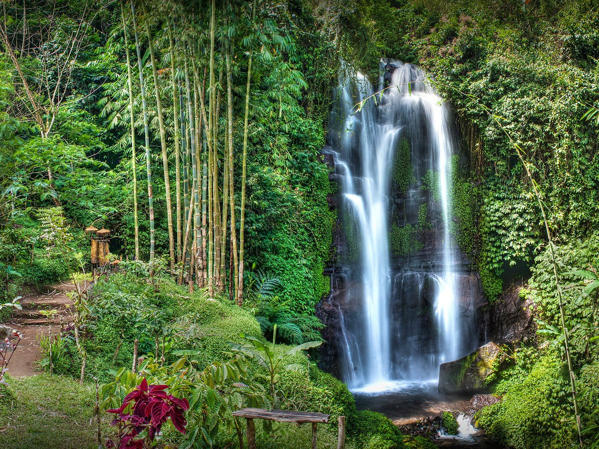 Munduk Waterfall Trek Bali Jungle Trekking Best Hiking Tour Guide