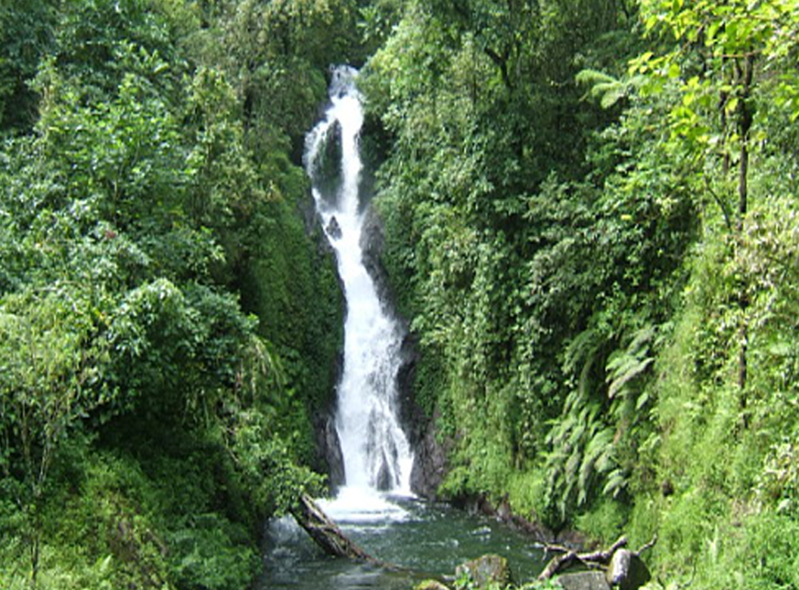 dedari-waterfalls-in-sambangan-village-bali