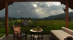 sanak-retreat-rice-field-view