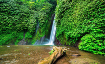 Red coral waterfalls Munduk Bali