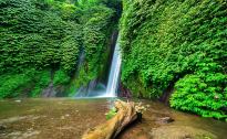 Red coral waterfalls Munduk Bali