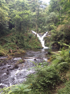 Campuhan Waterfalls