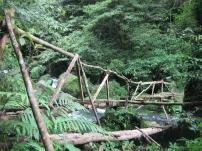 Hiking Tour in Sambangan Village Bali