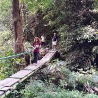 Trekking to Banyumala Waterfalls Bali