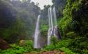 Trip to explore waterfalls in sekumpul village bali